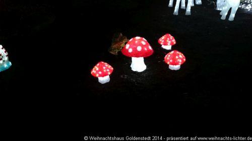 weihnachtshaus-goldenstedt-2014-1029