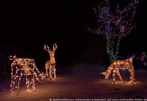 weihnachtshaus-hohenlinden-1005